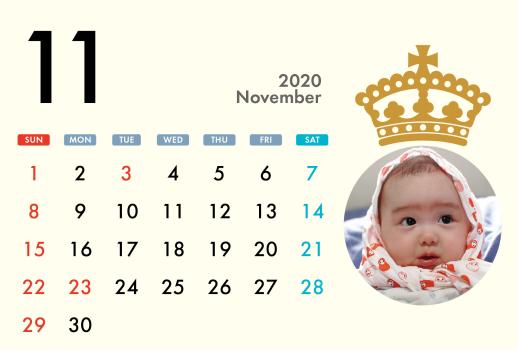 2020年11月用